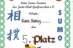 06-2013 Sumo Großrächen